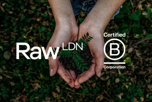 B Corporation logo and Raw London logo over hands holding a plant
