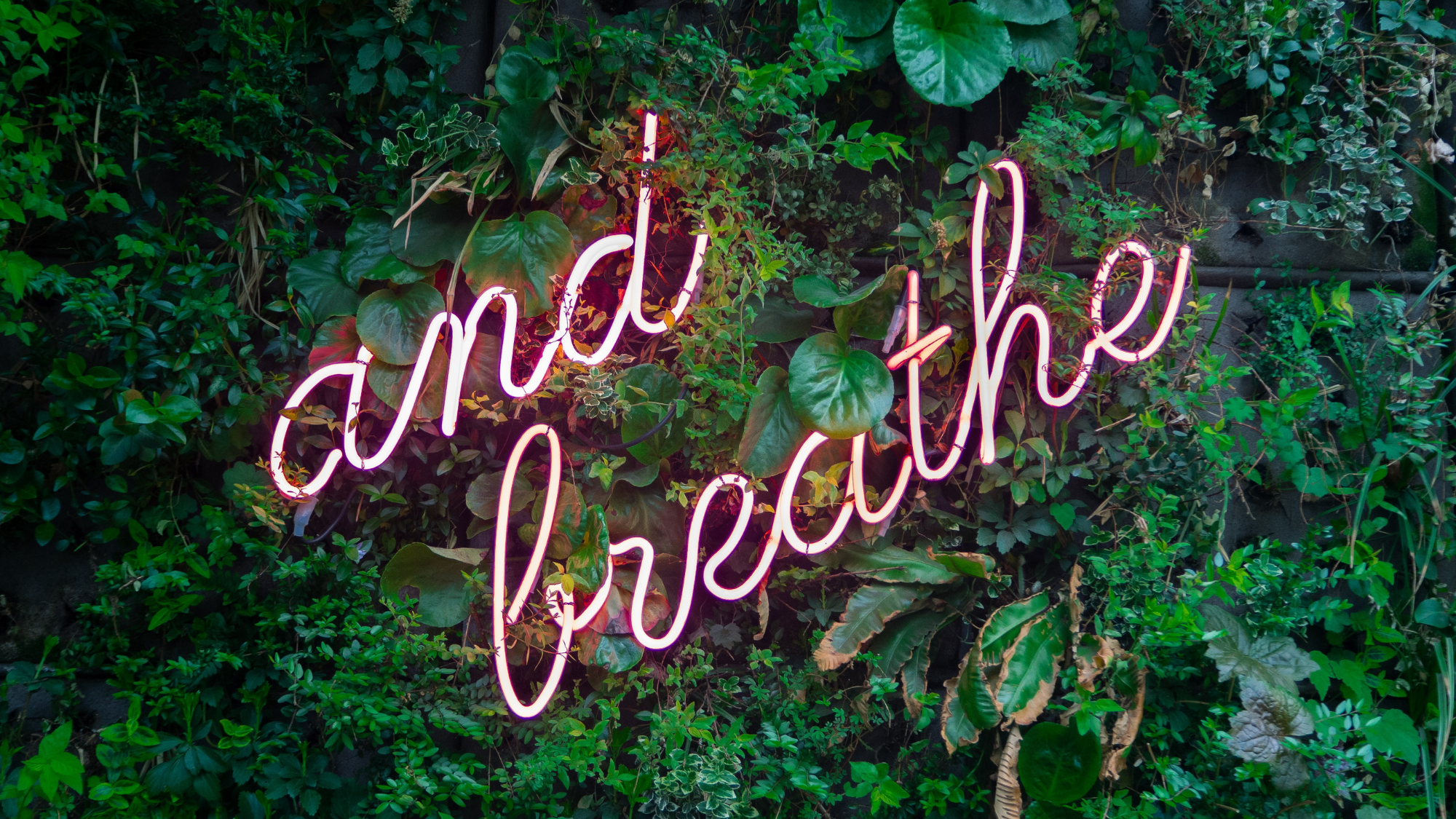 Greenery with 'and breathe' in neon
